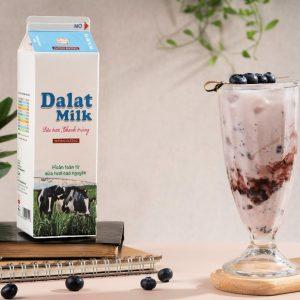 Công thức Blueberry Yogurt Shake độc lạ ngon như tiệm làm